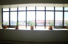 Daylight-Natural-Views-7